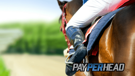 2017 Preakness Stakes Betting Trends & Facts for Price Per Head Agents