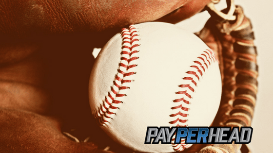 Price Per Head Tips: Can MLB Scalping Improve Your Profits?