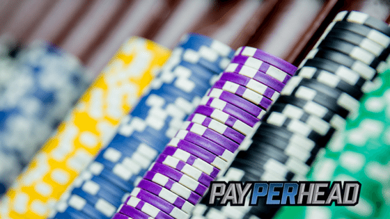 Profit With Online Casino Software