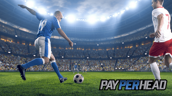 Pay Per Head Agents Should Expand to International Events
