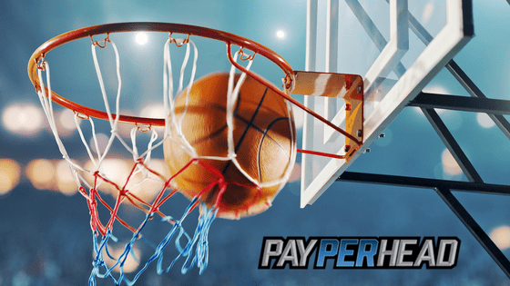 Price Per Head Tips: 4 Ways to Increase Basketball Betting Action