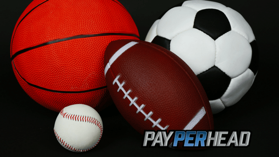 Pay Per Head Tips: How To Keep Players Betting When Super Bowl Is Over
