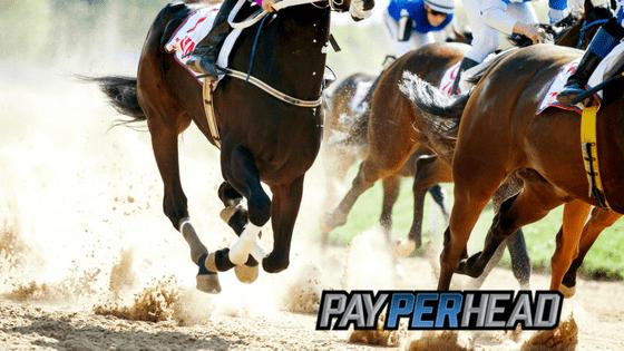 Horse Race Betting: Kentucky Derby Prep Races