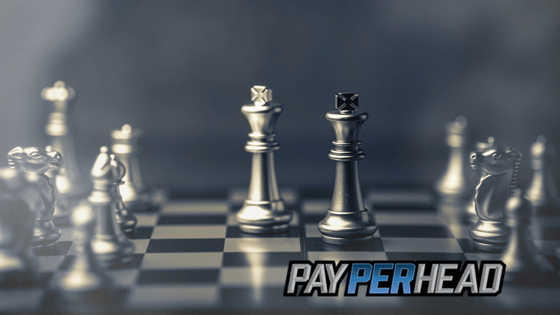 Pay Per Head Tips and Strategies To Put Into Action Now
