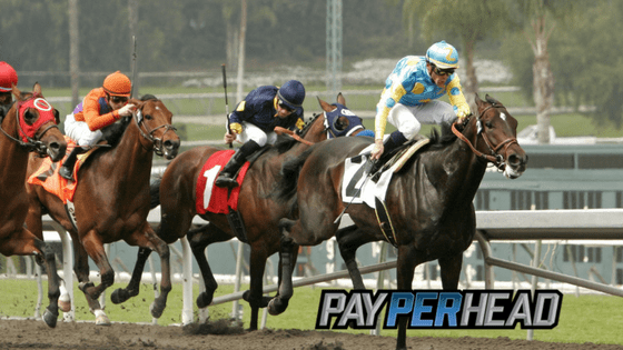 Racebook Tips: How Derby Points Can Affect The Stakes in Your Book