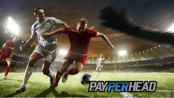 The Online Bookie's Guide to Profitable FIFA World Cup Prop Bets