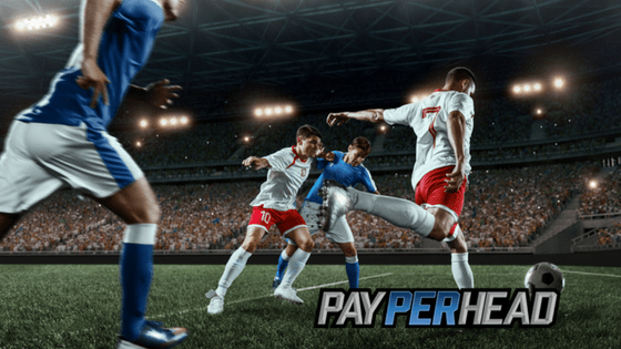 World Cup Betting Action & Power Rankings For Online Bookies