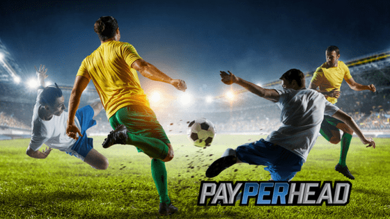 How Online Bookies Could Have Saved Their Soccer Betting Profit