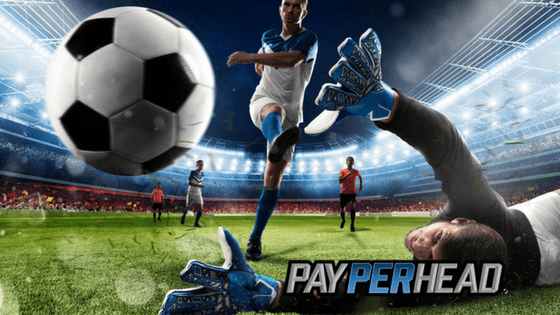 FIFA Quarterfinals Update: Strategically Increase Sportsbook Profits