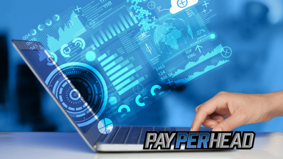 Top 4 Pay Per Head Tools Every Online Bookie Needs in Their Toolbox
