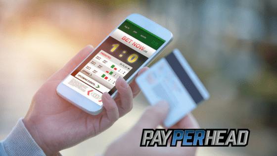 Premium pay per head software