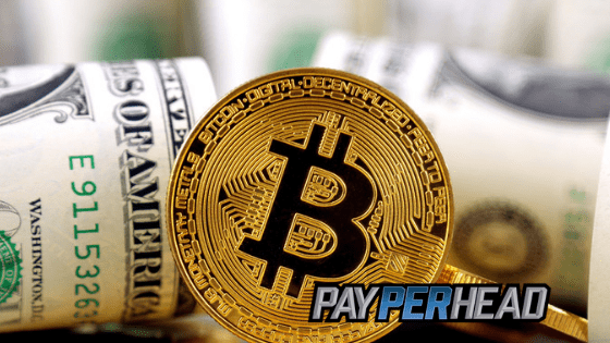 3 Marketing Tactics To Switch Your Bettors To Cryptocurrency