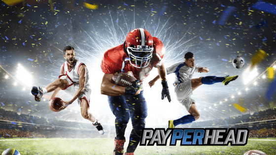 Premium PPH Tools To Increase NFL Week 2 Betting Profits