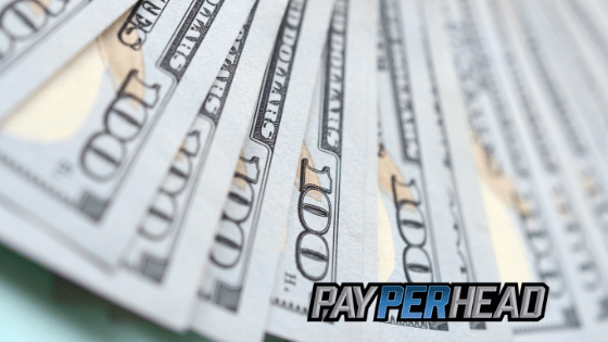 NFL Week 8 Betting Preview & Profitable Matchups For Sportsbooks